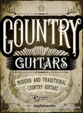 Dieguis Productions and Big Fish Audio Country Guitars