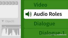 Lynda Final Cut Pro X and Logic Pro X 1 Audio Post Workflow