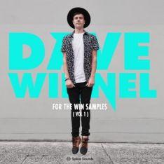 Splice Sounds Dave Winnel For The Win Samples Vol.1