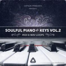 CAPSUN ProAudio Soulful Piano and Keys Vol.2