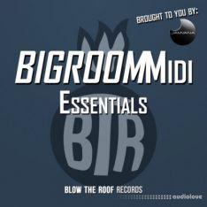 Jamvana Bigroom Midi Essentials