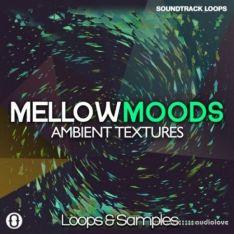 Soundtrack Loops Mellow Moods Ambient Textures