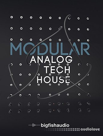 Big Fish Audio Modular Analog Tech House MULTiFORMAT KONTAKT