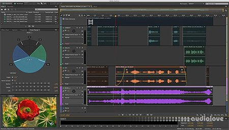 Adobe Audition CC 2019 v12.0.0.241 Multilingual / 2018 v11.1.0.184 WiN MacOSX