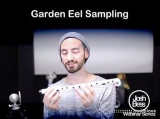 Groove3 Garden Eel Sampling