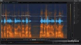 iZotope RX 5 Advanced Audio Editor