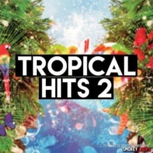 Smokey Loops Tropical Hits 2