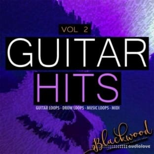 Blackwood Samples Guitar Hits Vol 2
