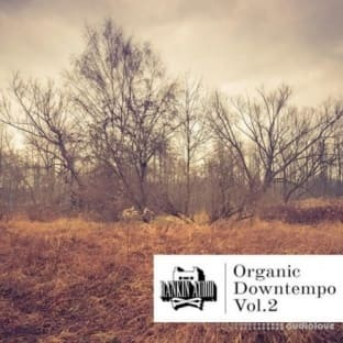 Rankin Audio Organic Downtempo Vol.2