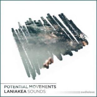 Laniakea Sounds Potential Movements