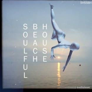 ShamanStems Soulful Beach House