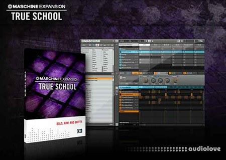 Native Instruments Maschine Expansion True School