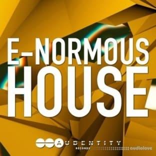 Audentity E-Normous House