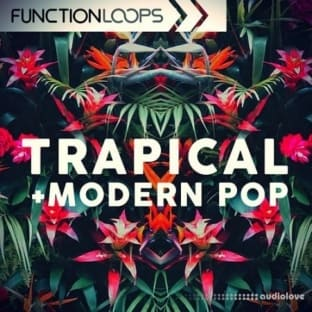 Function Loops Trapical and Modern Pop