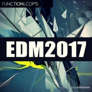 Function Loops EDM 2017