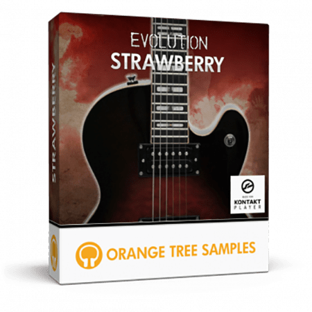 Orange Tree Samples Evolution Strawberry