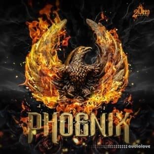 2DEEP Phoenix