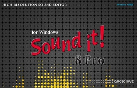 Internet Sound It 8 Pro v8.02.9 WiN