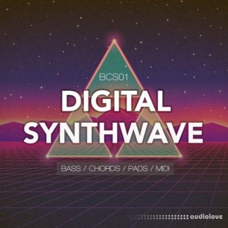 Bingoshakerz Compact Series Digital Synthwave WAV MiDi