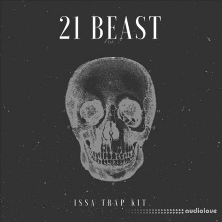 YnK Audio 21 Beast WAV