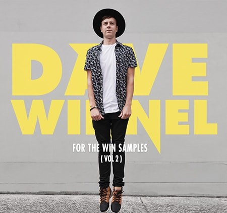 Splice Dave Winnel For The Win Vol.2 WAV