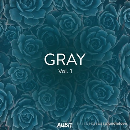 Aubit Gray Vol.1 WAV MiDi Synth Presets