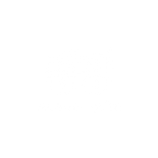 Academy.fm 17 Tutorials and Courses