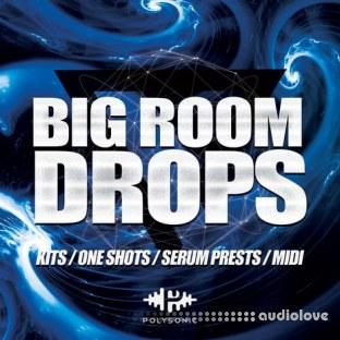 Polysonic Big Room Drops