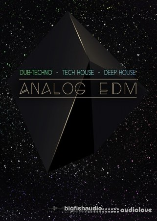 Big Fish Audio Analog EDM MULTiFORMAT KONTAKT