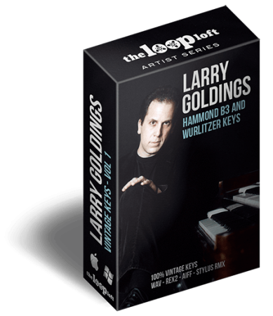 The Loop Loft Larry Goldings Vintage Keys Volume 1 WAV