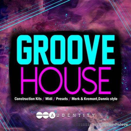 Audentity Groove House WAV MiDi Synth Presets
