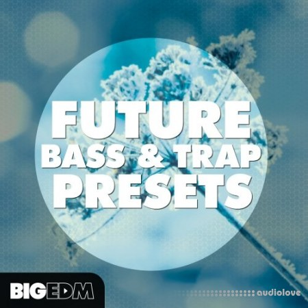 Big EDM Future Bass and Trap Presets Synth Presets