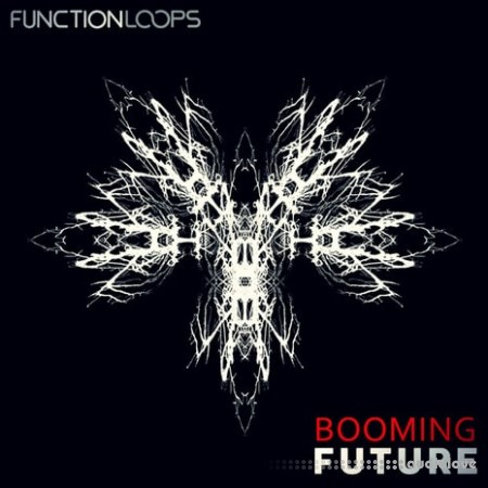 Function Loops Booming Future WAV MiDi
