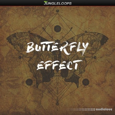 Jungle Loops Butterfly Effect WAV MiDi