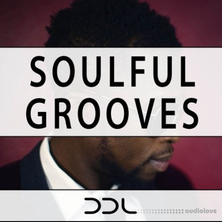 Deep Data Loops Soulful Grooves WAV MiDi