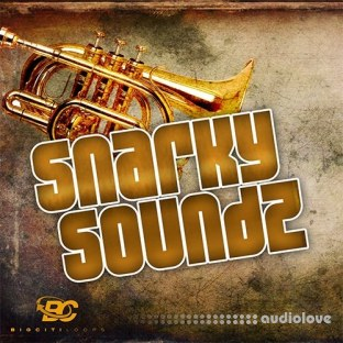 Big Citi Loops Snarky Soundz