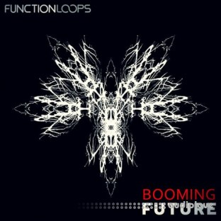 Function Loops Booming Future