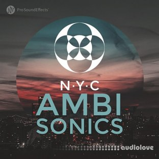 Pro Sound Effects Library NYC Ambisonics