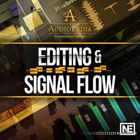Ask Video AudioPedia 107 Editing and Signal Flow TUTORiAL