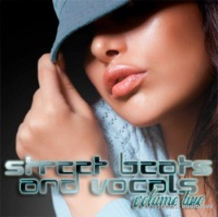 Big Fish Audio Street Beats and Vocals Vol.2 MULTiFORMAT