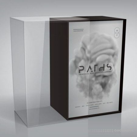 Audiomodern Paths KONTAKT