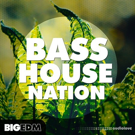 Big EDM Bass House Nation WAV MiDi Synth Presets