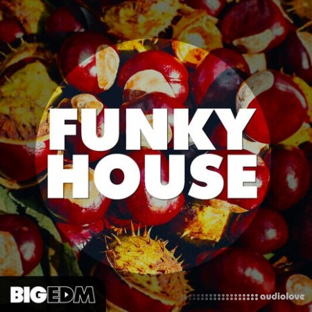 Big EDM Funky House WAV MiDi Synth Presets