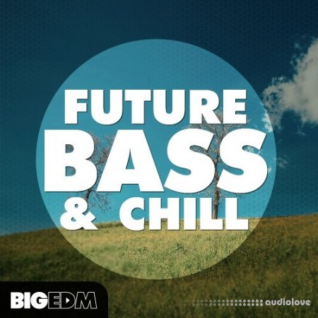 Big EDM Future Bass And Chill WAV MiDi Synth Presets