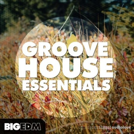 Big EDM Groove House Essentials WAV MiDi Synth Presets
