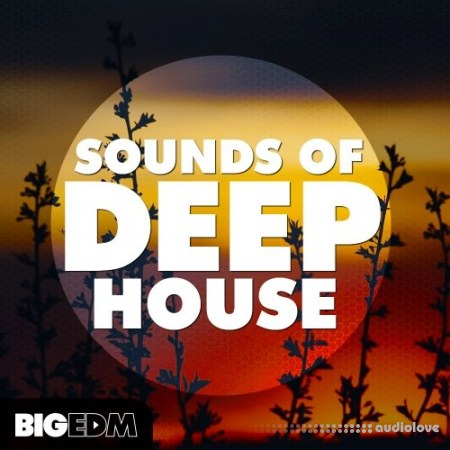Big EDM Sounds Of Deep House WAV MiDi Synth Presets
