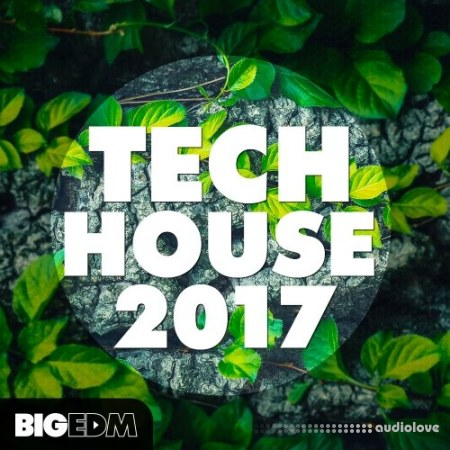 Big EDM Tech House 2017 WAV MiDi Synth Presets