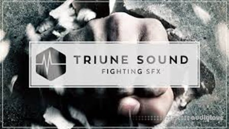 Triune Store Triune Sound Fighting SFX WAV