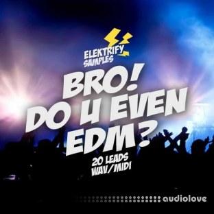 Elektrify Samples Bro Do U Even EDM