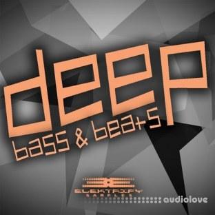 Elektrify Samples Deep Bass and Beats